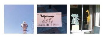 Blog_zoo_01_3
